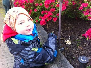 Richi buscando rosas de Sant Jordi en el jardín